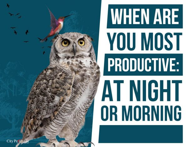 When Are You Most Productive Late Night vs. Early Morning