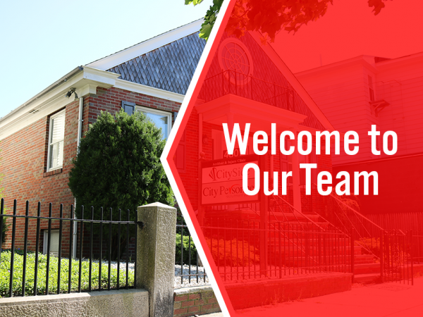 welcome to our team